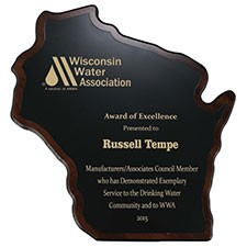 Wisconsin Shaped